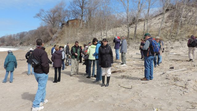 (X) BMNC Group Lake Erie Shore Marcy's Woods 26 Apr 2015